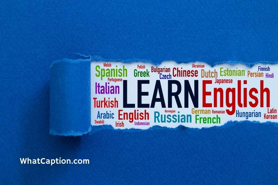 Foreign Language Learning Quotes