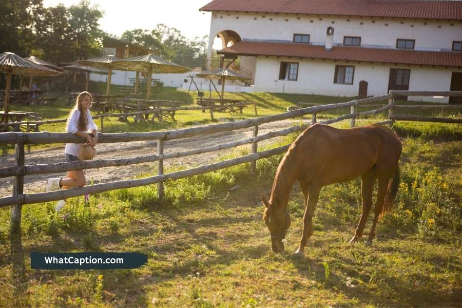 Ranch Instagram Captions